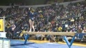 Michigan (Katie Zurales) - 9.775